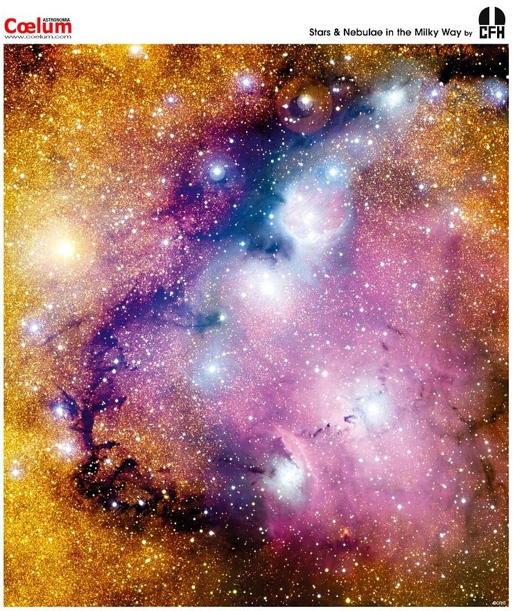 Nébuleuses et jeunes étoiles photographiée par le Canadian French Hawaian Telescope